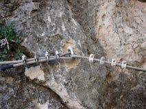Анкеры провода нержавеющей стали Стоковая Фотография RF