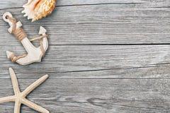Анкер и seashells Стоковая Фотография