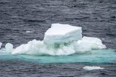 Антарктика - плавая лед - глобальное потепление Стоковые Изображения RF