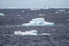 Антарктика - плавая лед - глобальное потепление Стоковые Изображения