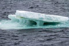 Антарктика - плавая лед - глобальное потепление Стоковые Фотографии RF
