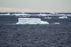 Антарктика - плавая лед - глобальное потепление Стоковое Изображение RF