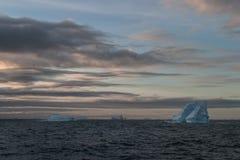 Антартические айсберги Стоковое фото RF