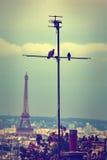 Антенна горизонта Парижа от Montmartre Стоковое Изображение