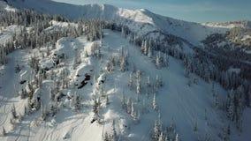 Антенна от лыжи лыжника человека трутня путешествуя в снежных горах гористых в линии сток-видео