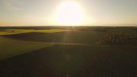 Антенна сельской местности Франции сток-видео