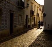 Антиквариат крыл улицу черепицей в Португалии стоковые фото