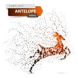 Антилопа, дукер, hartebeest, олень, иллюстрация точки газеля бесплатная иллюстрация