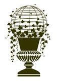 античная ваза плюща бесплатная иллюстрация