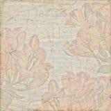 Античная винтажная ботаническая бумажная предпосылка Стоковое Фото