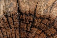Античная деревянная текстура Стоковая Фотография