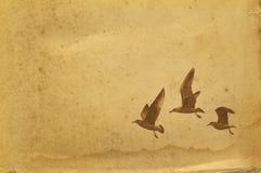 Античная старая бумага бесплатная иллюстрация
