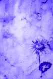 Античная флористическая бумага Стоковое Изображение