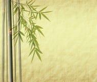 античное bamboo grunge выходит старая бумага иллюстрация штока