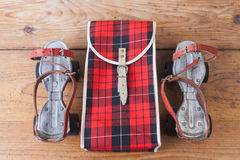 Античные коньки со своим случаем Стоковая Фотография