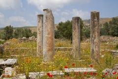 Античные штендеры в Греции стоковая фотография