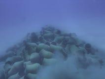 Античные amphoras в Красном Море Стоковые Изображения RF