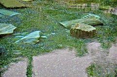 Античный бассейн Стоковое фото RF