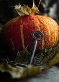 Античный винтажный ключ против предпосылки тыквы и листьев летания стоковые изображения rf
