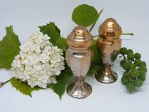 Античный серебряный шейкер соли и перца Стоковые Фотографии RF