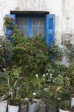 Античный фасад с заводами и цветками в Крите Греция Стоковое фото RF