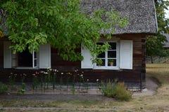 2 античных окна Стоковые Изображения RF