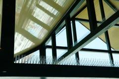 анти- шип птицы для защищая здания от голубя стоковые фото