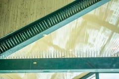 Анти- шип птицы на здании стоковая фотография