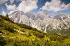 ландшафта группы alps muttekopf гор лужков австрийского красивейшего зеленого lechtal, котор нужно отстать Стоковые Фото