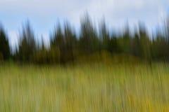 ландшафта фокуса поля дня облаков сини небо выставки заводов движения должного польностью зеленого маленькое не некоторые скачут  Стоковые Фотографии RF