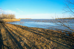 ландшафта фокуса поля дня облаков сини небо выставки заводов движения должного польностью зеленого маленькое не некоторые скачут  Стоковое Фото