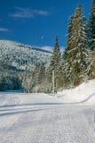 ландшафта часы зимы сезона Стоковые Фотографии RF