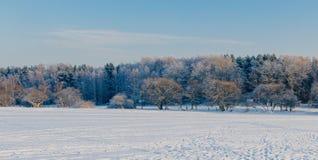 ландшафт братьев на восток далекий трясет зиму моря 2 России Стоковые Изображения RF