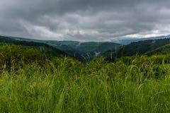 ландшафт естественный Стоковая Фотография