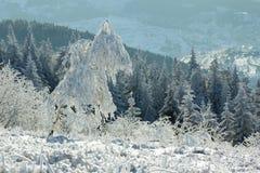ландшафт зимы прикарпатский Стоковые Изображения