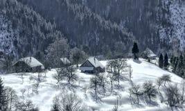 ландшафт зимы прикарпатский Стоковое Фото