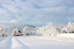 ландшафт зимы прикарпатский Стоковые Изображения RF