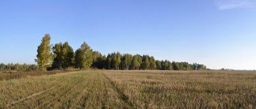ландшафт осени панорамный Стоковая Фотография RF