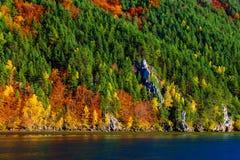 ландшафт осени цветастый Стоковое Изображение