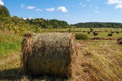 ландшафт панорамный природа haystack поля состава Стоковые Изображения