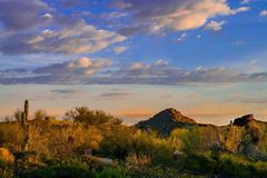 ландшафт пустыни Аризоны Стоковое Изображение RF