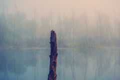 ландшафт сельский Стоковая Фотография RF