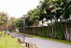 ландшафт тропический стоковое изображение rf