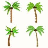 ландшафт тропический иллюстрация вектора