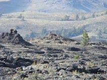 ландшафт туманный стоковые фотографии rf