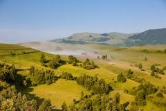 ландшафт туманный Стоковые Фото