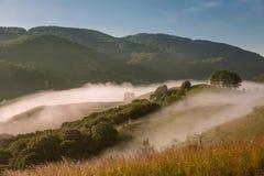 ландшафт туманный Стоковое фото RF