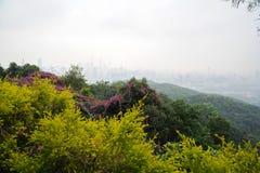 ландшафт урбанский Стоковое фото RF