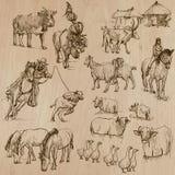 ландшафт фермы животных лето много sheeeps Нарисованный рукой пакет вектора Стоковые Фото
