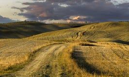 ландшафт tuscan Красивое тосканское утро Стоковое Изображение RF